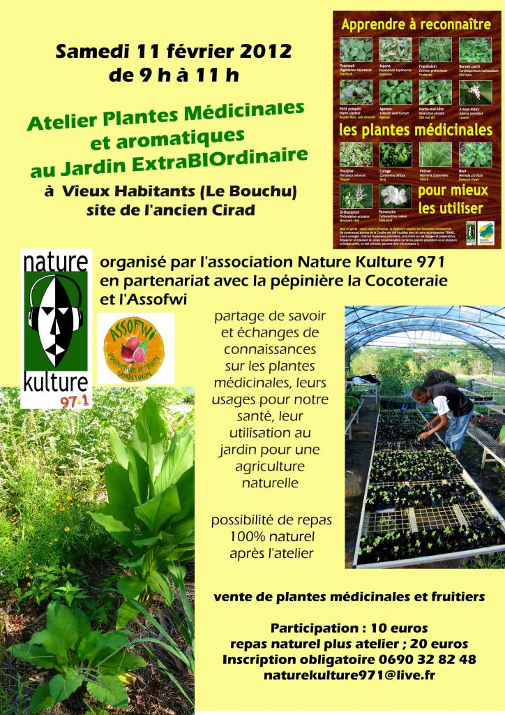 Atelier plantes médicinales et aromatiques samedi 11 février 2012 dans le jardin extraBIOrdinaire atelier-plantes-f%C3%A9vrier-web-724x1024
