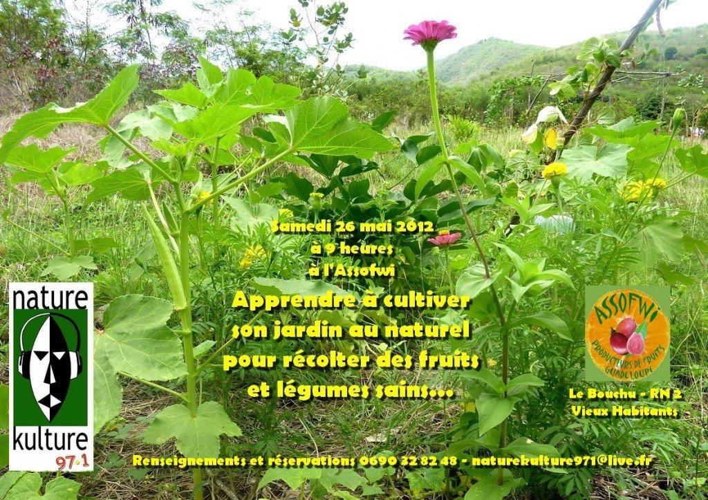 Atelier Agriculture naturelle samedi 26 mai 2012 à Vieux Habitants association-plantes-1024x723