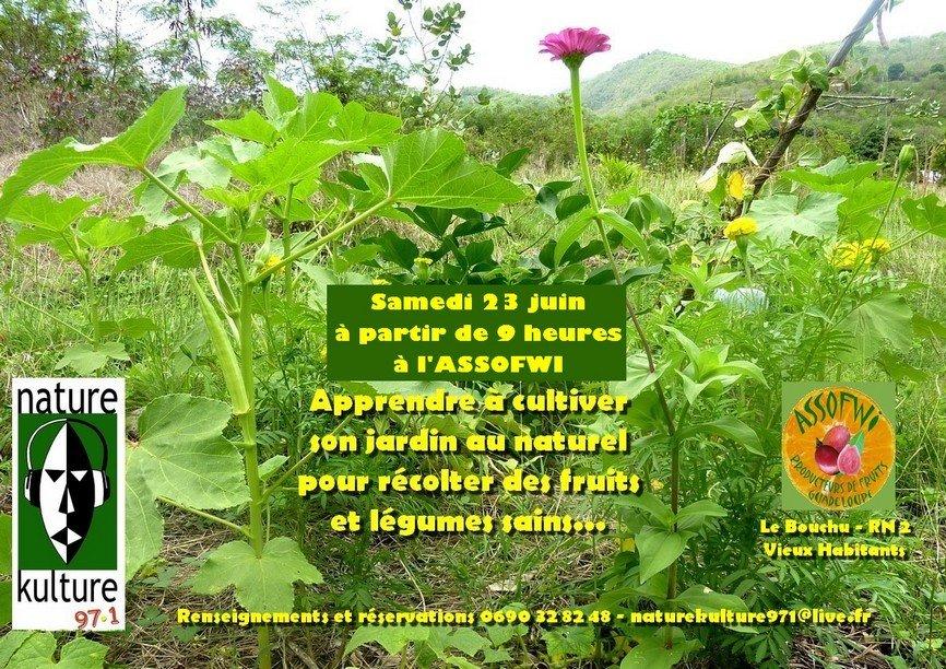 Atelier Jardin au naturel samedi 23 juin 2012 avec Nature Kulture 971 dans le jardin extraBIOrdinaire atelier-jardin-23-juin