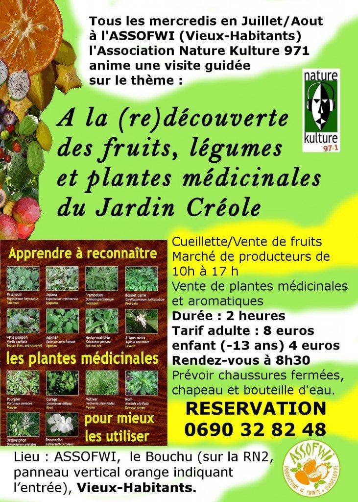 A la (re)découverte des fruits, légumes et plantes médicinales du Jardin Créole flyer-ete-assofwi